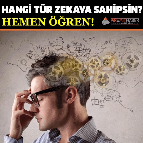 1983 yılında Amerikalı psikolog Howard Gardner tarafından geleneksel zeka kuramına eleştiri olarak ortaya atılan çoklu zeka kuramına göre, her bireyin birbirinden farklı gelişen pek çok zekası var.   Bu zeka türleri genel olarak 8 başlık altında toplanmıştır.   Özellikleri okuyarak size en çok hangisi veya hangilerinin uyduğunu bulabilir ve bu sayede hangi tür zekaya sahip olduğunuzu öğrenebilirsiniz...