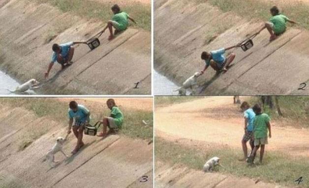 Iki arkadaş köpeği kurtarıyor