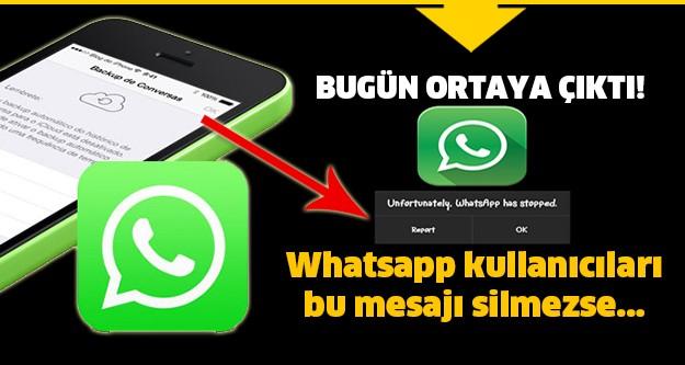 WhatsApp'a bulunan bir açığın uzaktan uygulamayı çökertmeye izin verdiği anlaşıldı.