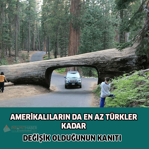 Amerikalıların Türkler Kadar Değişik Olduğunun Kanıtları