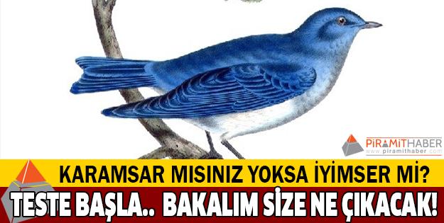 Mavi kuş testi! (İlginç bir kişilik testi)