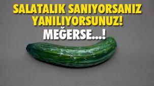 Şu an gördüğünüz bir salatalık değil..!