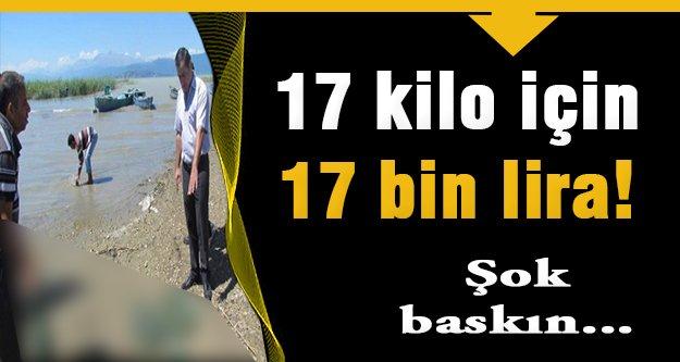 17 kilo kurbağa için 176 bin lira ceza