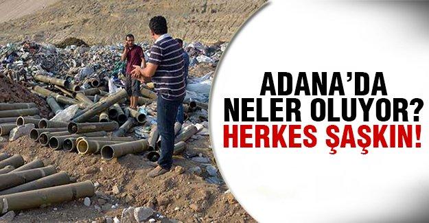 Adana'da çöplükte bulundu!