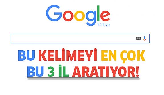 Türkiye'de en çok bu iller aratıyor!