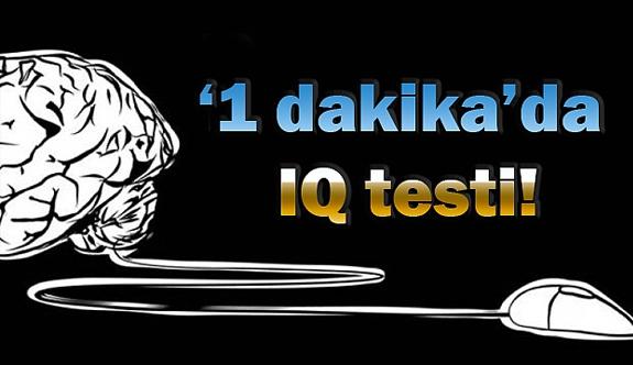 1 dk da IQ testi!