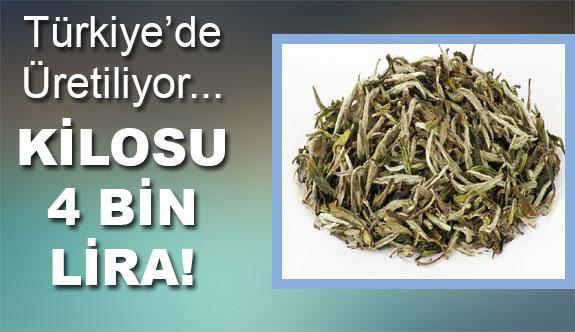 Türkiye'de üretiliyor... Fiyatı dudakları uçuklatıyor!