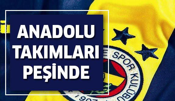 Anadolu takımları Fenerbahçe'li genç oyuncunun peşinde!