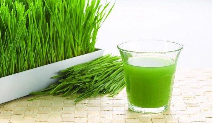 Buğday Çimi Suyunun Mucizeler Yaratan Faydaları