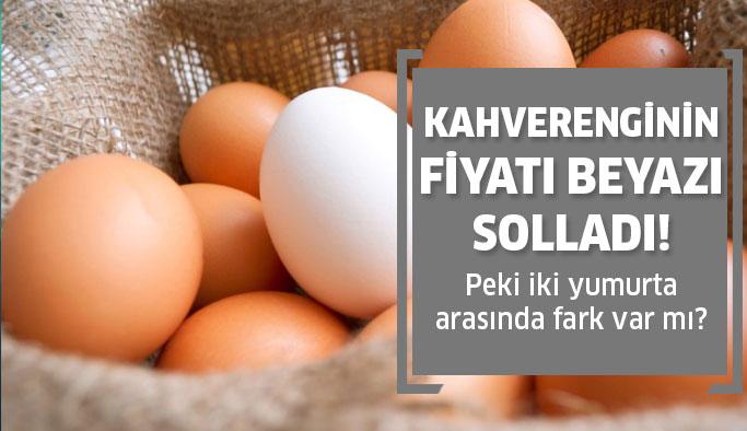Kahverengi yumurta beyaz yumurtayı geçti