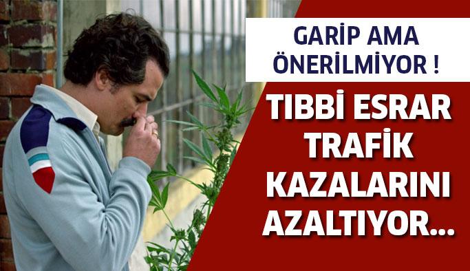 Tıbbi Esrar Trafik Kazalarını Azaltıyor !