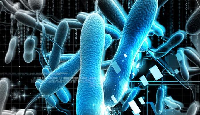 Kolera Hastalığı Nedir ? Nasıl Tedavi Edilir ?