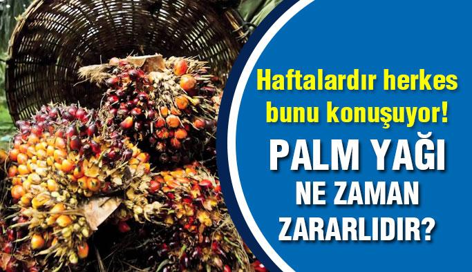 Palm Yağı Ne Zaman Neye Zararlı ?