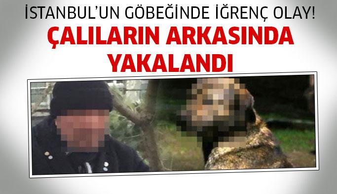 Hiçbir Şey Olmamış Gibi Devam Etti! İstanbul'un Göbeğinde İğrenç Olay!