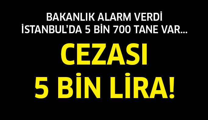Cezası 5 bin lira