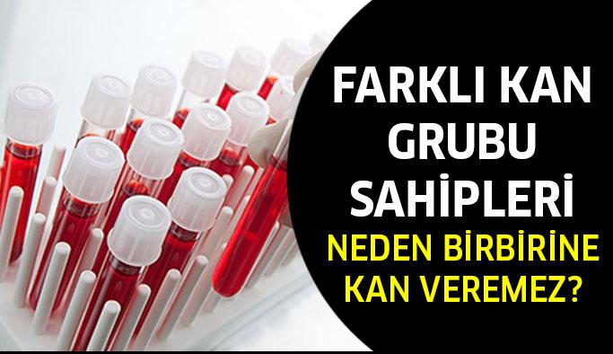 Farklı Kan Grupları Neden Birbirlerine Kan Veremez?