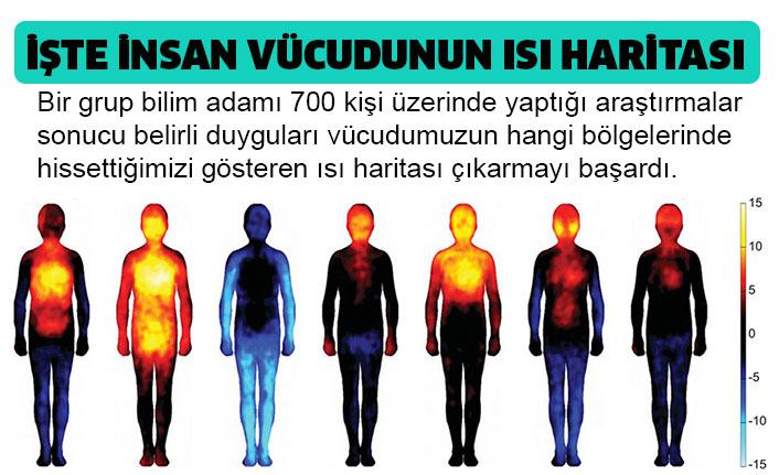 İnsan vücudunun ısı haritası