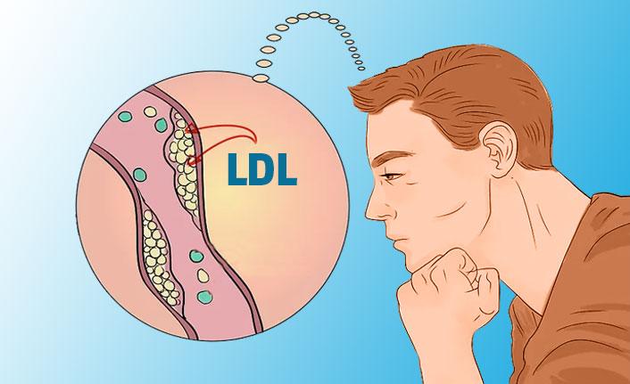 LDL Nedir? Yüksekliği ve Düşüklüğü Ne Anlama Gelir?