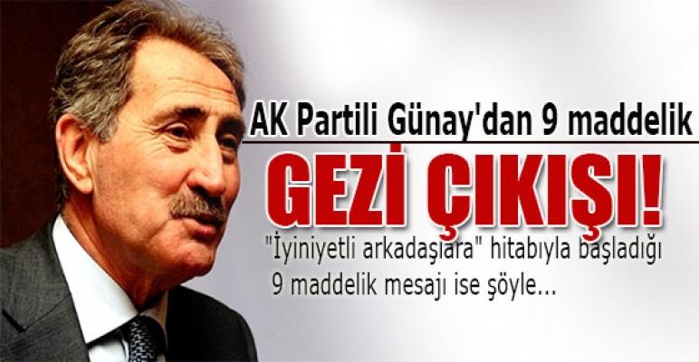 AK Partili Günay'dan 9 maddelik Gezi çıkışı