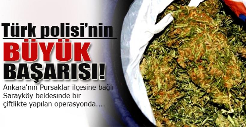 Ankara'da 1 ton esrar ele geçirildi