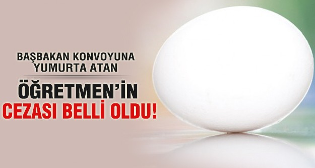 Başbakanlık konvoyuna yumurta atmıştı!