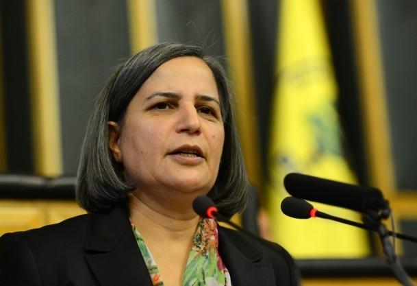 BDP'den ''heyet'' çağrısı