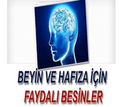 Beyin ve Hafıza İçin Faydalı Besinler