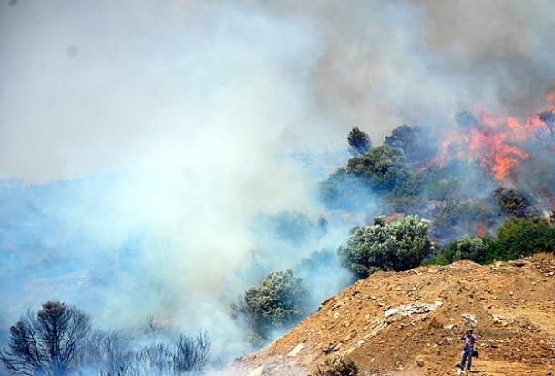 Bodrum'daki yangınlar kontrol altına alındı