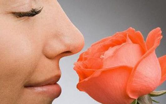 Burnumuz bir trilyon farklı kokuyu algılayabiliyor!