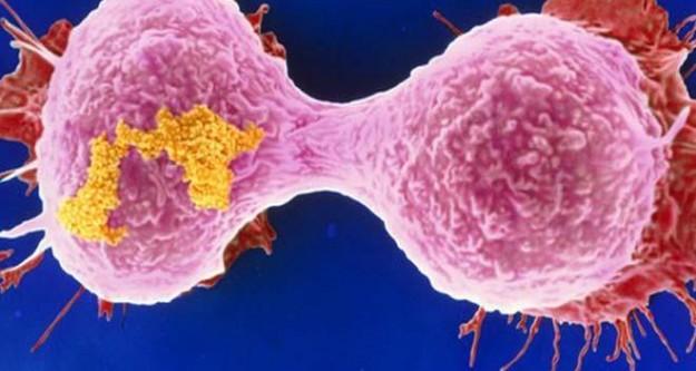 Cilt kanserinde büyük risk!