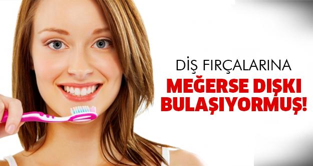 Diş fırçalarında büyük tehlike!