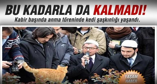 Erbakan anmasında kedi sürprizi