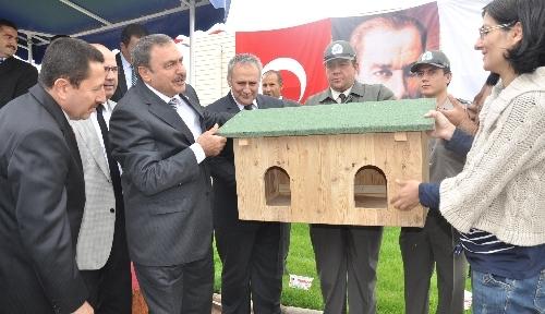 Eroğlu, Afyon'da hayvan barınağını açtı, kedi evleri projesini başlattı