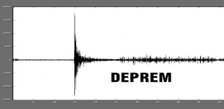 Erzurum'da Deprem !