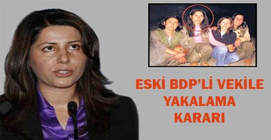 Eski BDP'li vekile yakalama