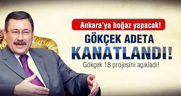 Gökçek Ankara'ya boğaz yapacak