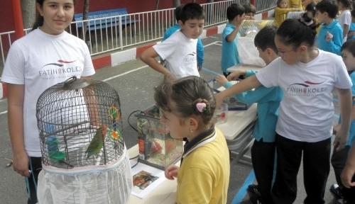 Hayvan sevgisi okulu hayvanat bahçesine çevirdi