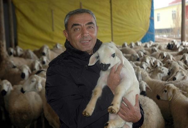 Hayvan yetiştiricileri 'çoban' bulamıyor