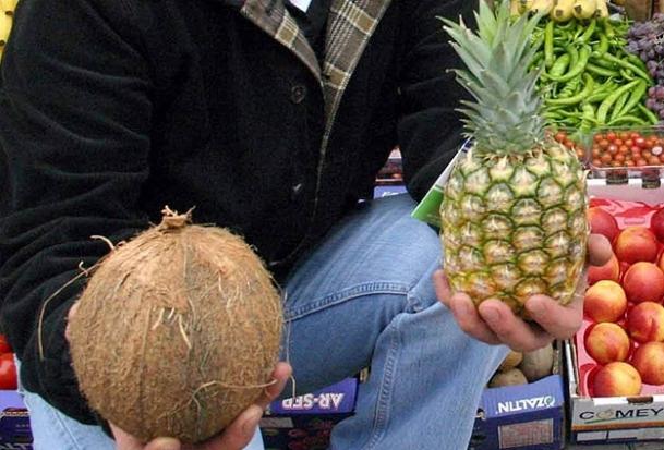 Hindistan cevizi tadında ananas