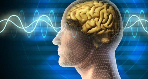 İnsan beyni 45'inde 'çöküş dönemine giriyor'