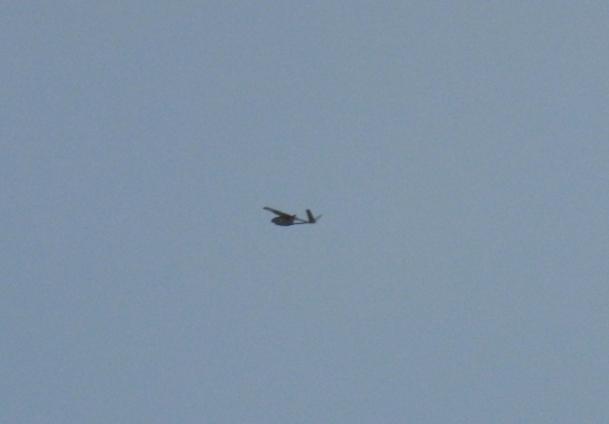 İnsansız hava uçağı ele geçirildiği iddiası
