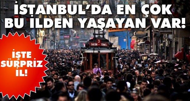 İstanbul'da meğerse en çok onlarmış..
