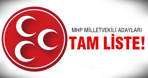 İşte 2015 milletvekili MHP aday listesi...