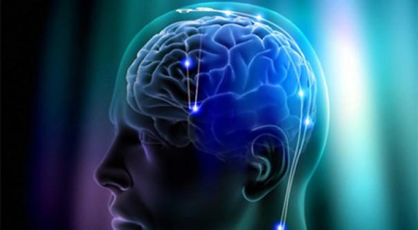 İşte beyni genç tutan şey?