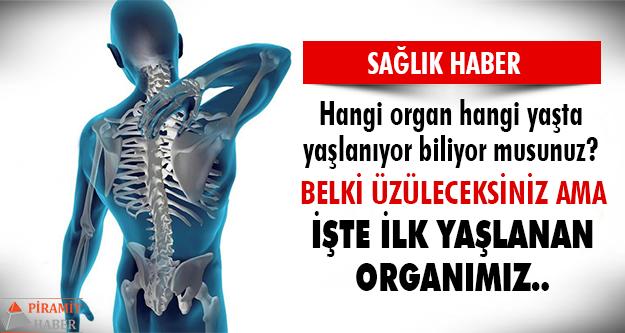 İşte organlarımızın şaşırtan yaşlanma süreleri..