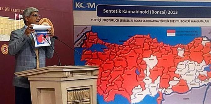 İşte Türkiye'nin Bonzai haritası!