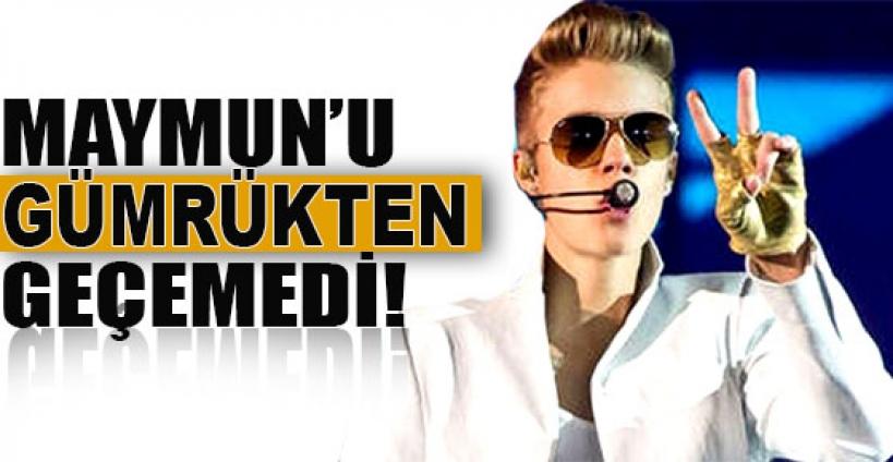 Justin Bieber'in maymunu Almanya'da kalacak