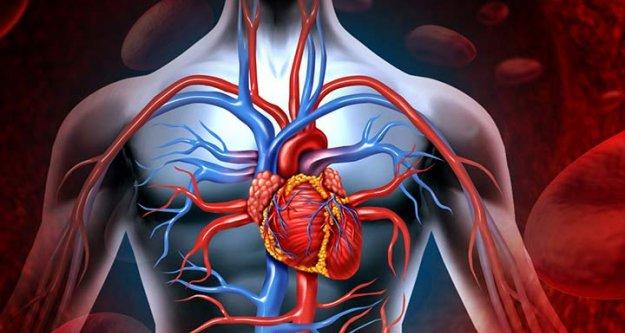 Kalp Yetmezliğinin Belirtileri Ve Tedavisi