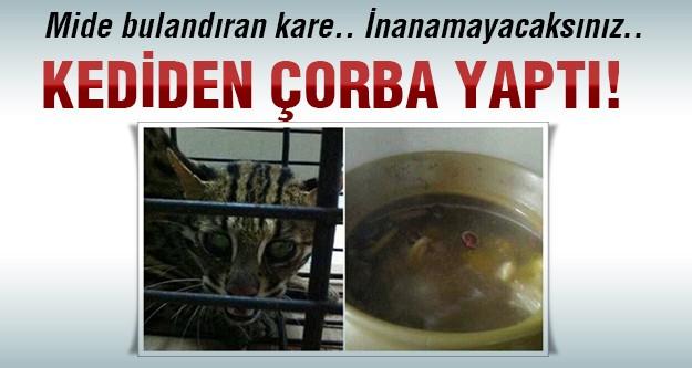 Kediden çorba yapıp sosyal medyada yayınladı!