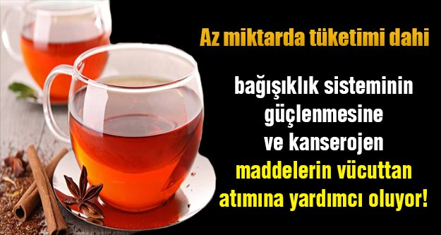 Kırmızı çay (rooibos çayı)